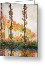 Poplars, Autumn Greeting Card