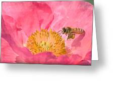 Poppies And Bumble Bee Greeting Card