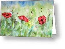 Poppies And Dandelions Greeting Card