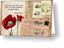 Poppies And Postcards Greeting Card