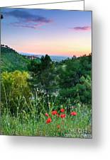 Poppies And The Alhambra Palace Greeting Card