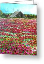 Poppies At Cedar Point Greeting Card