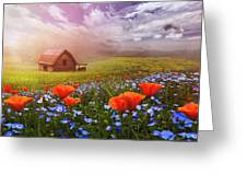 Poppies In A Dream Greeting Card