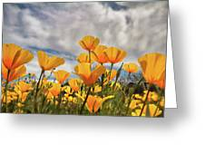 Poppies In The Wind Part Two  Greeting Card