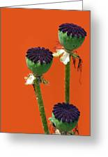 Poppies On Orange Greeting Card