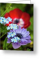 Poppy And Friends Greeting Card
