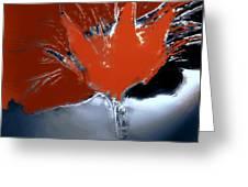 Poppy Explosion Greeting Card