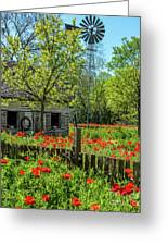 Poppy Farm Greeting Card