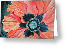 Poppy For A New Day Greeting Card
