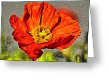Poppy - Id 16235-142749-5072 Greeting Card