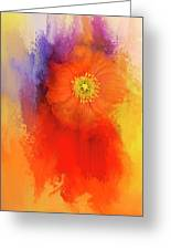 Poppy Of Summer Greeting Card