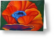 Poppy Pleasure Greeting Card