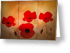 Poppy Triptych Greeting Card by Valerie Anne Kelly
