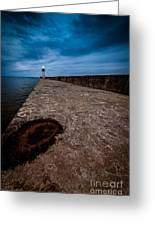 Port Of Newcastle Greeting Card