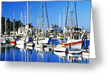 Port Townsend Harbor Greeting Card