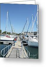 Port With Yacht  Greeting Card