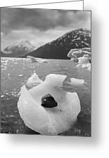 Portage Glacier, Ice Basket Greeting Card