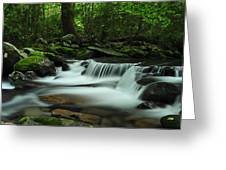 Porter's Cascade In Spring Greeting Card