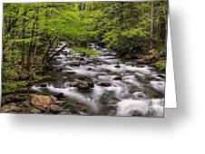 Porters Creek Greeting Card