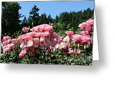 Portland's Pink Roses Greeting Card