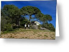 Portofino Trekking Hiking And Walking In The Wood Greeting Card