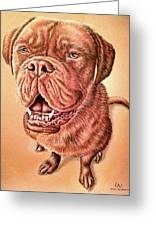 Portrait Drawing Of A Dog Greeting Card