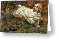 Portrait Of A Clumber Spaniel Hunting Greeting Card by Walter A. Weber