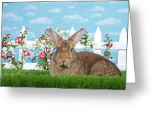 Portrait Of A Gregarious Brown Bunny Greeting Card