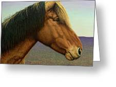 Portrait Of A Horse Greeting Card by James W Johnson
