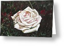Portrait Of A Rose 3 Greeting Card