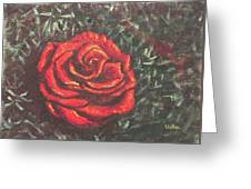 Portrait Of A Rose 4 Greeting Card