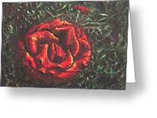 Portrait Of A Rose 6 Greeting Card