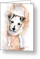Portrait Of Abby - Jack Russell Terrier Greeting Card