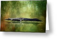 Portrait Of Alligator Greeting Card