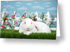 Portrait Of An Albino Lop Greeting Card