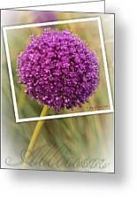 Portrait Of An Allium Greeting Card