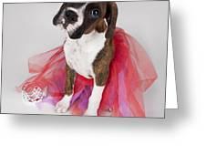 Portrait Of Dog Wearing Tutu Greeting Card