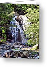 Portrait Of Houston Brook Falls Greeting Card