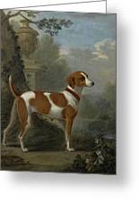 Portrait Of The Duke Of Hamilton Hound Greeting Card