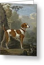 Portrait Of The Duke Of Hamilton's Hound Jewell Greeting Card
