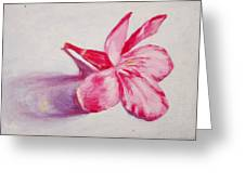 Portrait Of The Kaneri Flower. Oleander Greeting Card