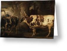 Portrait Of Two Oxen - The Property Of The Earl Of Powis Greeting Card