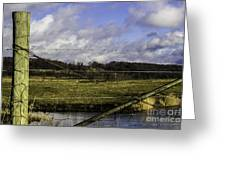 Post By Marshland Greeting Card