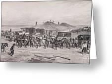 Post Horses Greeting Card