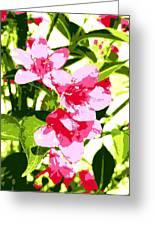 Poster Pink Greeting Card