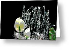 Posterized Fountain And Flower Greeting Card