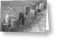 Posts In A Row Greeting Card