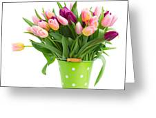 Pot Of Pink And Violet Tulips Greeting Card
