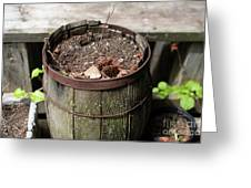 Pot Waiting For New Plant Greeting Card