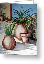 Pots And Bougainvillea Greeting Card